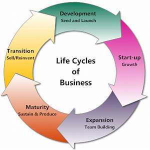 Business Life Cycles